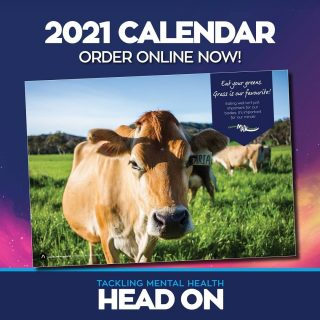 It's not too late to grab a copy of our 2021 Calendar. You can still buy it online (link in bio) All proceeds will go towards supporting vital mental health research at @breakthroughmhr. A huge thank you to everyone for their support already. Every little bit makes a difference.